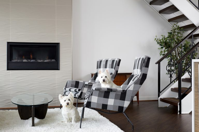 Two dogs in front of fireplace